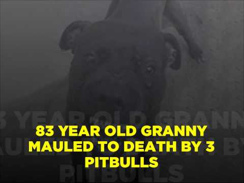 83 Year old Gran mauled to death by 3 pitbulls in Trinidad