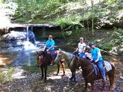 Jackie D and Sulphur Creek