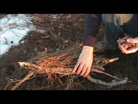 Starting a Fire in a wet pine Forest