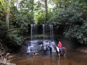 Timber Ridge Water Fall Trail!!!!!