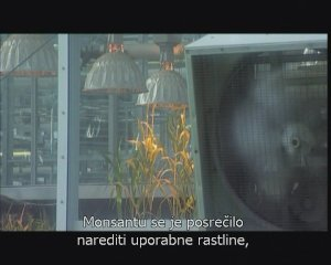 Life running out of control - Genetically Modified Organisms - 1:32:42 - Jan 23, 2007