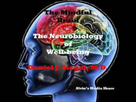 The Mindful Brain - The Neurobiology of Well-Being, by Daniel Siegel- M.D.