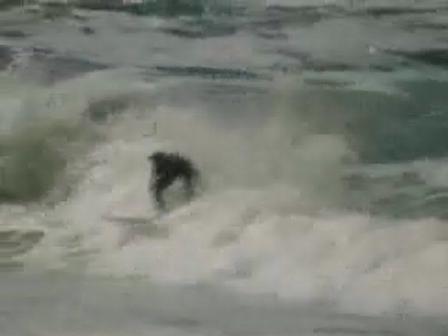 short herolds bay clip