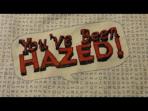 You've Been Hazed Time Lapse Needlepoint