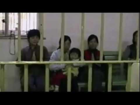 Tués pour leurs organes, le marché de la transplantation, un secret d'État chinois