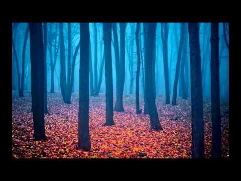 Krishnamurti - Les croyances empêchent la vraie compréhension - 14 02
