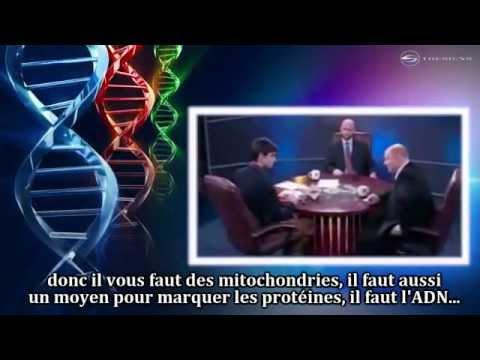 Les Signes de l'existence de Dieu - Le Film (Complet) | HD Sous-titré Français