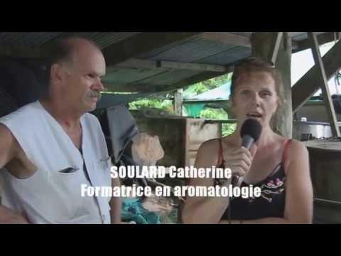 Reportage: Huile essentielle de bois de rose C. Soulard