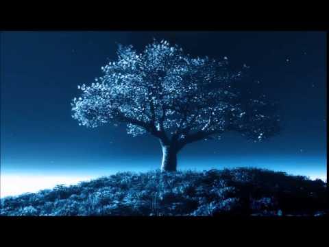 L'arbre Qui Voit - Anouar Brahem