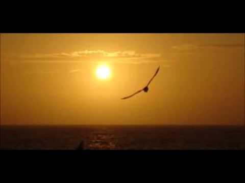 La chanson du soleil JC Lallaizon JJ Larribal