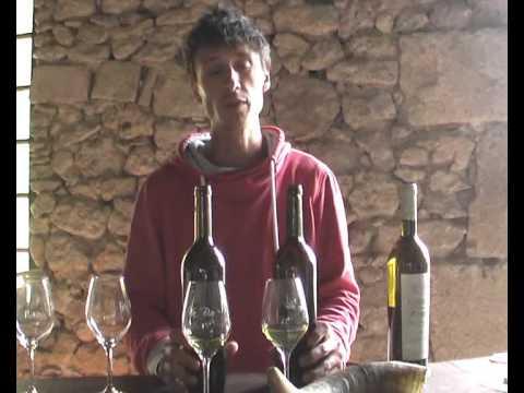 Etude de géobiologie d'un domaine viticole de Bordeaux