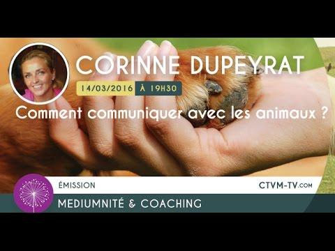 14/03/2016 - Comment communiquer avec les animaux ?