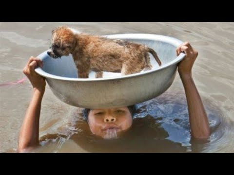 Restoring Faith In Humanity - Try To Watch This Without Crying - Real Life Heroes 2016