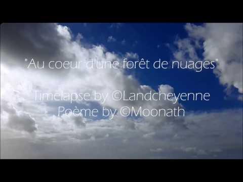 Au coeur d'une forêt de nuages - Timelapse by ©Landcheyenne