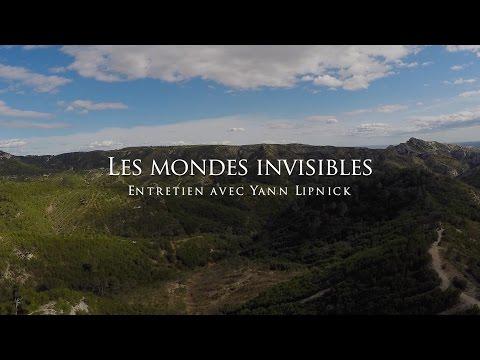 Yann Lipnick : Les mondes invisibles