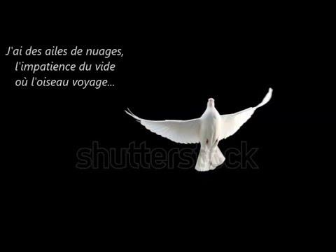 """"""" Dove Song """"   -  montage Poésie et Musique"""