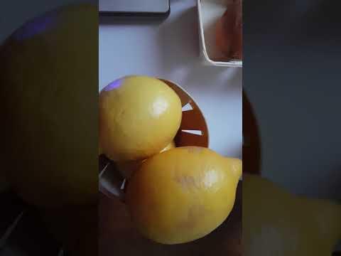 Les citrons magnétisés à différents stades
