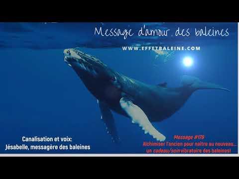 Alchimiser l'ancien pour naître au nouveau un cadeau/soin des baleines!!