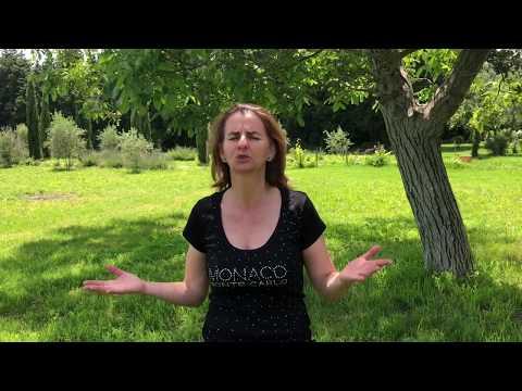 Classe fondation animée par Isabelle Girard  - Témoignage de Joséphine