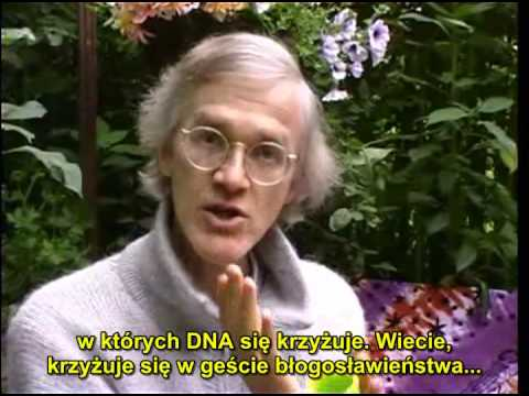 The Purpose of DNA 1/12