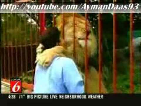lion hugging and kissing woman who saved it
