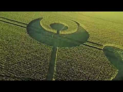 Mysterious crop circles appear in Dorset field