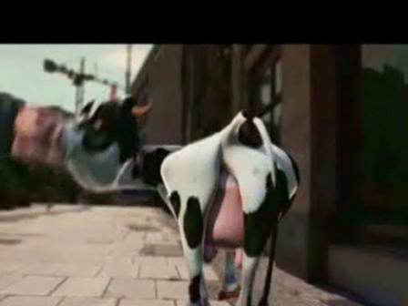 Cow Raper