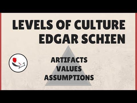 Organizational Culture by Edgar Schein