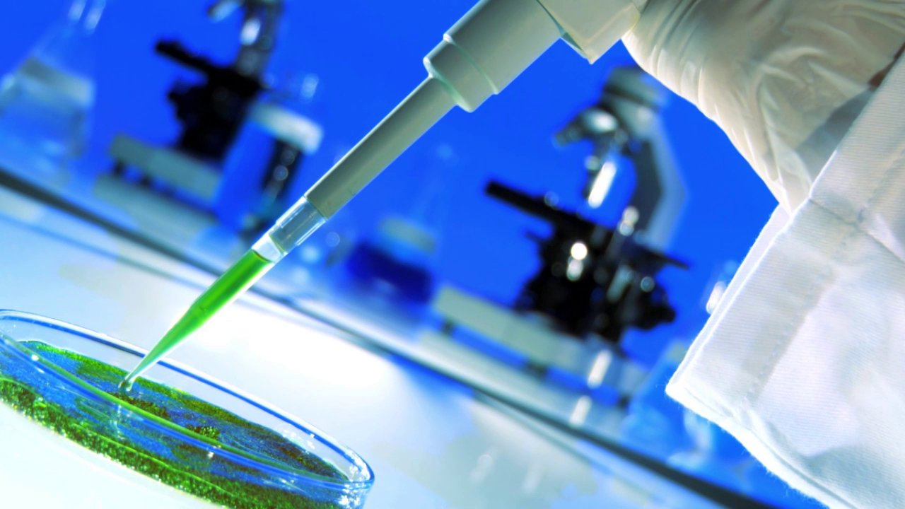 What are, and how we use, Stem Cells