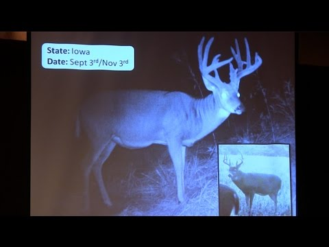 """""""Age This"""" Live! QDMA's Interactive Buck Aging"""