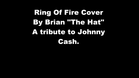 Ring Of Fire (Cover)