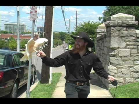 8 Ball Aitken - Cowboy Movie