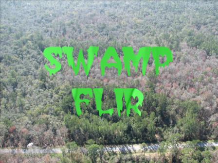 Swamp FLIR shortest B music