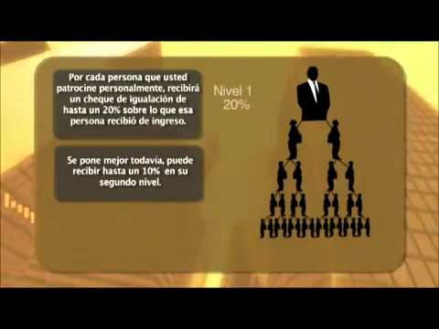 Parte 5 - Plan de Compensacion Organo Gold - Matching Bonus