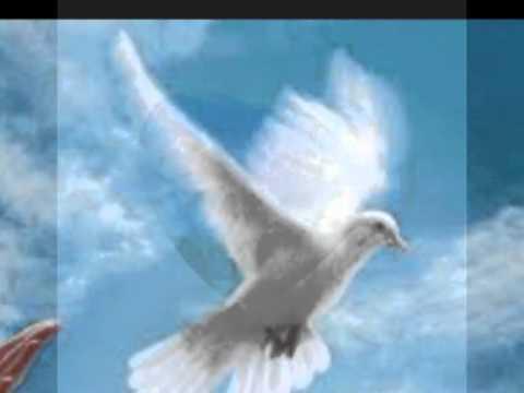 Music for peace , musique pour la paix