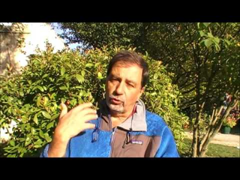 Interview de Claude L'HEUREUX - Coach assisté par les chevaux - Vaucluse (84)