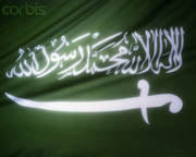 Faris Bin Sultan