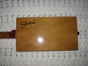 Shane's Guitar
