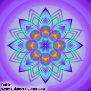 rubia12