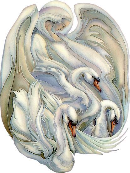 Aves e Pássaros (276)