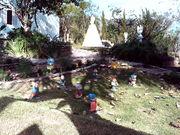 aqui fotos novas 033