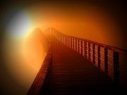 bridgetolightlight