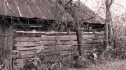 Old Forgotten Barn, Pulaski, WI