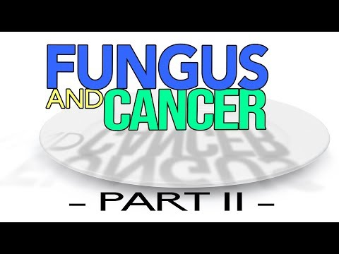 Fungus And Cancer - PART II - LIVE Q&A with Doug Kaufmann