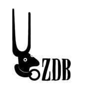 Galeria Zé dos Bois