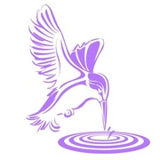 Kingfisher Decking