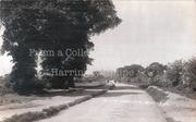 White Hart Lane, looking towards Ally Pally, c1915