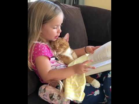 I always enjoy the readings of my little human