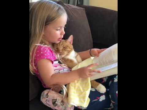 I always enjoy the readings of my little human