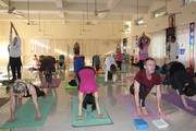 Hatha Yoga Courses in Rishikesh India